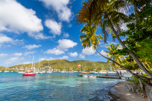 Boats in Port Elizabeth, Admiralty Bay, Bequia, The Grenadines, St. Vincent and the Grenadines, Windの写真素材 [FYI03799479]
