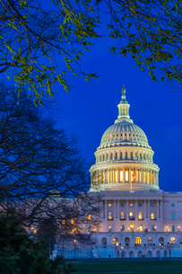 View of the United States Capitol Building at dusk, Washington D.C., United States of America, Northの写真素材 [FYI03799572]
