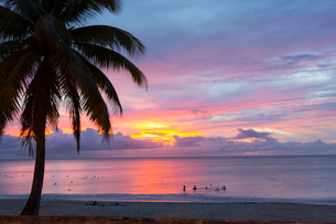 Mullins Beach, St. Peter, Barbados, West Indies, Caribbean, Central Americaの写真素材 [FYI03799671]