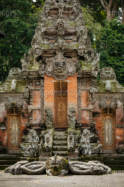 Monkey Forest Sanctuary, Ubud, Bali, Indonesia, Southeast Asia, Asiaの写真素材 [FYI03799827]