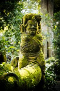 Monkey Forest Sanctuary, Ubud, Bali, Indonesia, Southeast Asia, Asiaの写真素材 [FYI03799829]