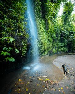 Tukad Cepung Waterfall, Bali, Indonesia, Southeast Asia, Asiaの写真素材 [FYI03799844]