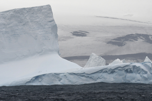 Iceberg with small number of penguins just off the coast of Bristol Island, South Sandwich Islands,の写真素材 [FYI03799886]