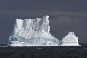 Iceberg with penguins against a blue sky, South Sandwich Islands, Polar Regionsの写真素材 [FYI03799896]