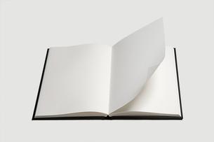 Blank bookの写真素材 [FYI03800147]