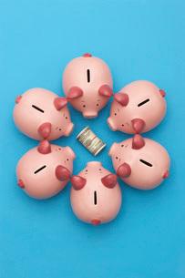 Piggy banks surrounding roll of dollar bills blue backgroundの写真素材 [FYI03800841]