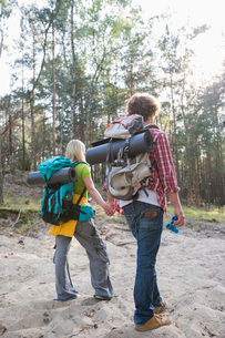Rear view of hiking couple with backpacks walking in forestの写真素材 [FYI03801083]