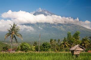Gunung abang volcano in baliの写真素材 [FYI03801391]