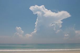 Tranquil beach sceneの写真素材 [FYI03801397]