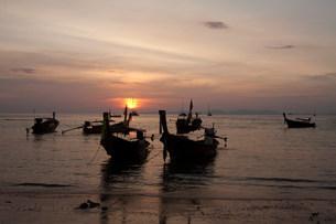 Fishing boats moored on Krabi Island, Thailandの写真素材 [FYI03801467]
