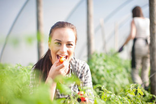 Young woman trying produce at vegetable farmの写真素材 [FYI03801617]