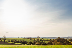 Idyllic agricultural landscape in autumnの写真素材 [FYI03802028]