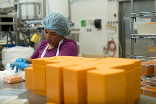 Woman packaging vegan cheese in warehouseの写真素材 [FYI03802058]