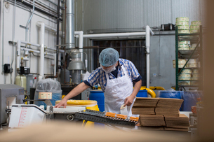 Man packaging vegan cheese in warehouseの写真素材 [FYI03802066]
