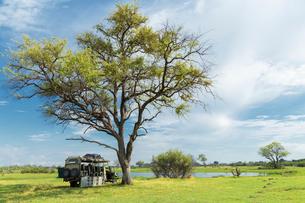 Stationary safari truck, Okavango Delta, Chobe National Park, Botswana, Africaの写真素材 [FYI03802392]