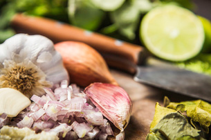 Ingredients for making green curry pasteの写真素材 [FYI03802573]