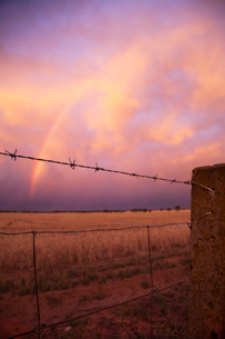 View of wire fence, rainbow and storm clouds at sunset, Ultima, Victoria, Australiaの写真素材 [FYI03802614]
