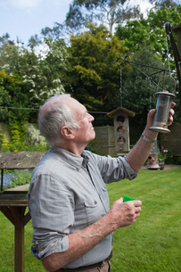 Senior man refilling bird feeder in gardenの写真素材 [FYI03802773]