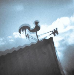 Art photograph of weather vane cockerelの写真素材 [FYI03802999]
