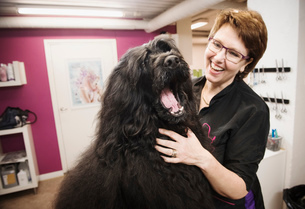 Portrait of dog and groomer in dog grooming salonの写真素材 [FYI03803098]