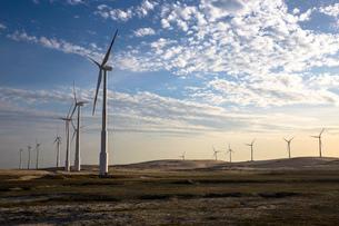 Wind turbines in a row on wind farm against dramatic skyの写真素材 [FYI03803458]