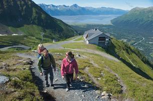 Tourists on pathway, Mighty Might Trail, Alyeska Resort, Turnagain Arm, Mt. Alyeska, Girdwood, Alaskの写真素材 [FYI03803737]