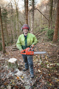 Conservationist working in a reserve to remove non-native conifer trees for natural forest restoratiの写真素材 [FYI03804137]