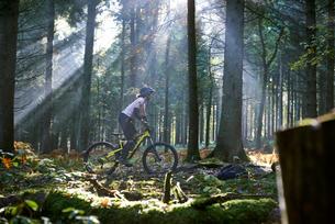 Female mountain biker cycling through sunbeam lit Forest of Dean, Bristol, UKの写真素材 [FYI03804825]