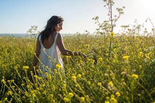 Woman in field of wildflowersの写真素材 [FYI03804849]