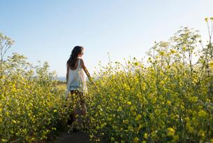 Woman in field of wildflowersの写真素材 [FYI03804852]