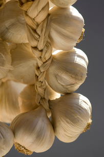 Hanging bunch of garlic bulbsの写真素材 [FYI03804862]