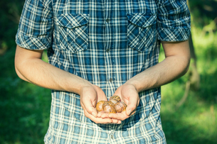 Man holding handful of foraged snails, Vogogna, Verbania, Piemonte, Italyの写真素材 [FYI03804961]