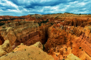 Elevated view of sandstone rock formations, Bryce canyon, garfield County, Utah, USAの写真素材 [FYI03805206]