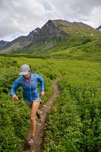 Woman running the Gold Mint Trail, Talkeetna Mountains near Hatcher Pass, Alaska, USAの写真素材 [FYI03805311]