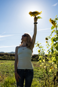Young woman holding up sunflower head in field on organic farmの写真素材 [FYI03805436]