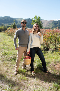 Portrait of mid adult couple with basket of picked apples in organic farm orchardの写真素材 [FYI03805439]