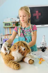 Girl pretending to be vet examining toy tiger using stethoscopeの写真素材 [FYI03805442]
