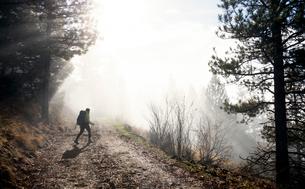 Young woman trekking along pathway, Missoula, Montana, USAの写真素材 [FYI03805509]