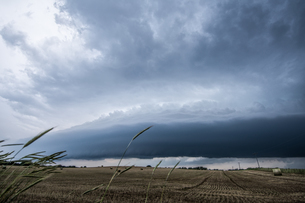 Layered supercell storm over and around wheat fields, Fairview, Oklahoma, USAの写真素材 [FYI03806540]