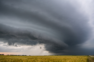 Layered supercell storm over and around wheat fields, Fairview, Oklahoma, USAの写真素材 [FYI03806541]