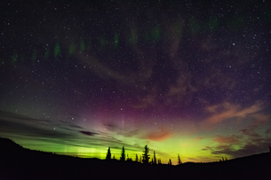 Northern lights, auroral arc, Nickel Plate Provincial Park, Penticon, British Columbia, Canadaの写真素材 [FYI03806868]
