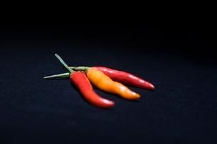 Three chilli peppersの写真素材 [FYI03807896]