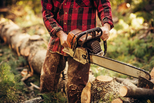Midsection of male lumberjack cutting log in forestの写真素材 [FYI03808852]