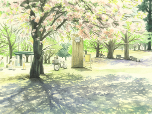 桜の公園のイラスト素材 [FYI03809670]