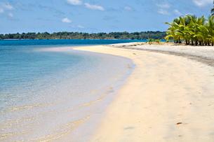 Boca Del Drago Beach, Colon Island (Isla Colon), Bocas del Toro Province, Panamaの写真素材 [FYI03810988]