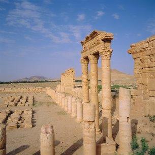 Graeco-Roman Agora, Palmyra, Syria, Middle Eastの写真素材 [FYI03811008]