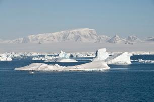 Ice in the Antarctic Sound, Antarctic Peninsula, Antarcticaの写真素材 [FYI03811038]