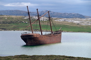 The wreck of the Lady Elizabeth, Stanley, East Falkland, South Atlanticの写真素材 [FYI03811181]