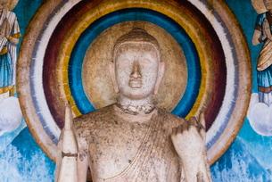 Statue at Ruvanvelisaya Dagoba, Mahavihara (The Great Monastery), Anuradhapura, Cultural Triangle, Sの写真素材 [FYI03811361]