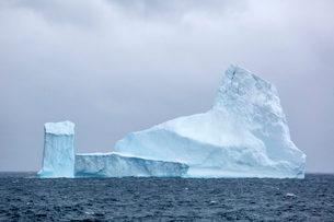 Huge tabular icebergs broken off from B-17A Iceberg near Cooper Bay, South Georgia Overseas Protectoの写真素材 [FYI03811492]